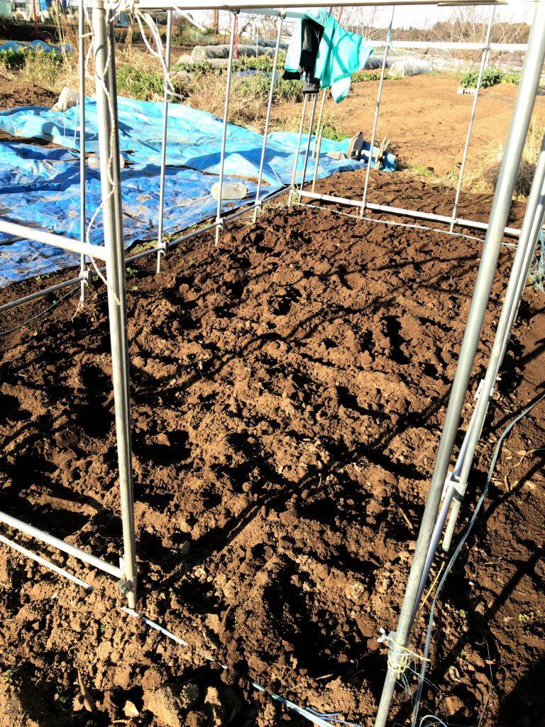 トマトの土壌作り完成