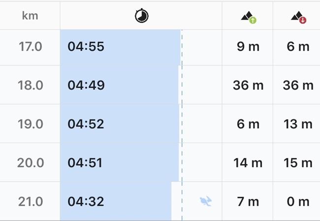 ハーフマラソン 後半ペース